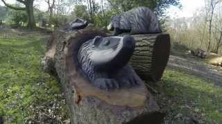 "Chainsaw Dave: Time Lapse Chainsaw Carving - ""Badgers"""