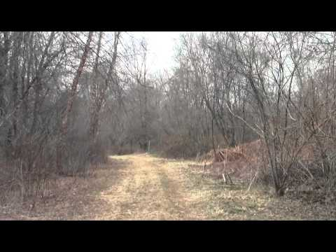 Neponset River Greenway Canton MA Fowl Meadow Part 5.