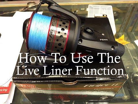 Penn Fierce II 6000 Live Liner Review!