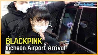 BLACKPINK(블랙핑크) 마지막 돔 투어 마치고 왔…