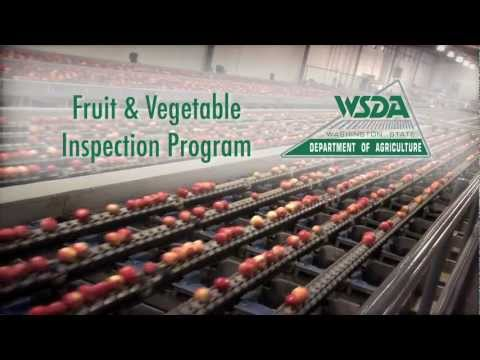 WSDA's Fresh Fruit & Vegetable Inspection Program