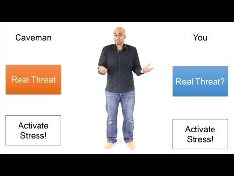 Why is Stress Stressful?