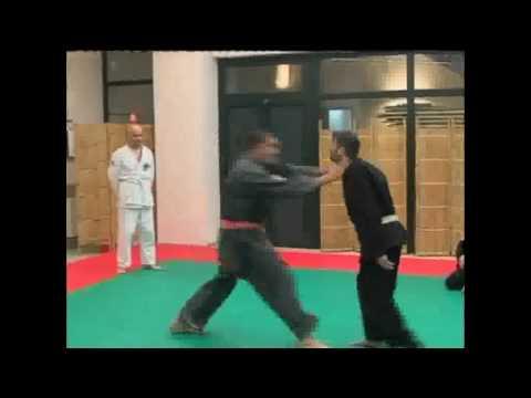 Cosa è il jujitsu (Parte2)