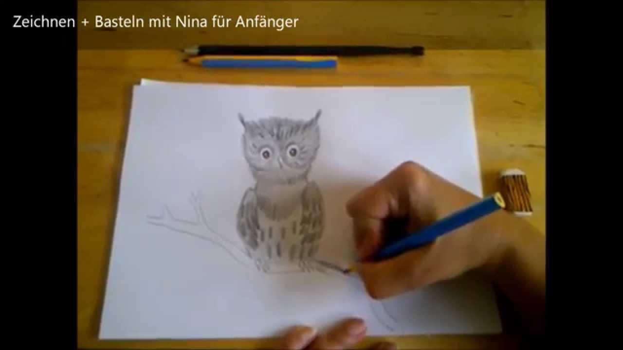 Baby Eule Zeichnen Zeichnen Lernen Fur Anfanger Und Kinder How To
