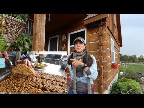 PUMPKIN oatmeal bake FALL FARMHOUSE COOKING from SCRATCH