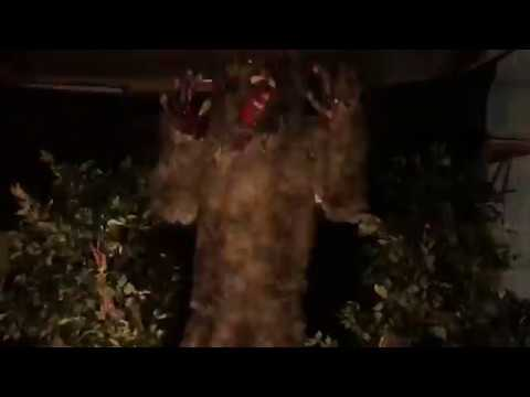 werewolf in the woods animated halloween prop