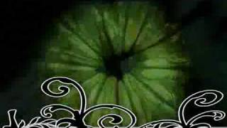 Free Goa Trance Collection Part 3: OOOD - Herbs & Spices.mp3