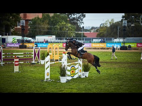 Prince of Wales Cup - Jumping - 2017 Royal Melbourne Show Horses In Action