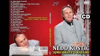 nedjo-kostic-gazdarica-audio-2014