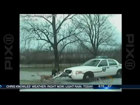 PIX Morning News - Dog attacks police car