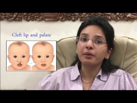 Introduction to Speech-LAnguage Disorders (English)