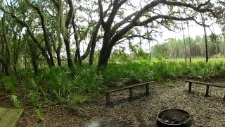 Primitive Campsite in Upper Hillsborough Tract