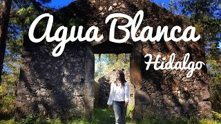 Video ¡Pesqué mi propia TRUCHA! AGUA BLANCA, HIDALGO. download MP3, 3GP, MP4, WEBM, AVI, FLV Oktober 2018