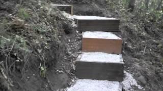 Landscape Steps A Hillside Stairway