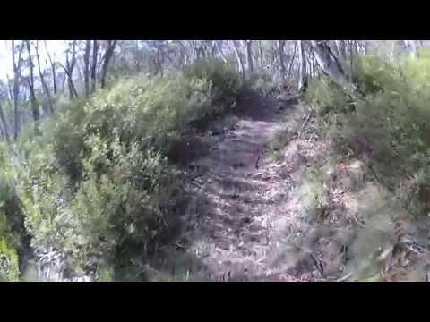 Nice Mountain Biking Road Trips | Fun Mountain Bike Trails