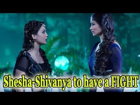 Shesha-Shivanya to have a FIGHT thumbnail