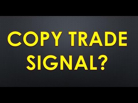 copy-trade-dan-penyedia-signal-trading-forex-menguntungkan