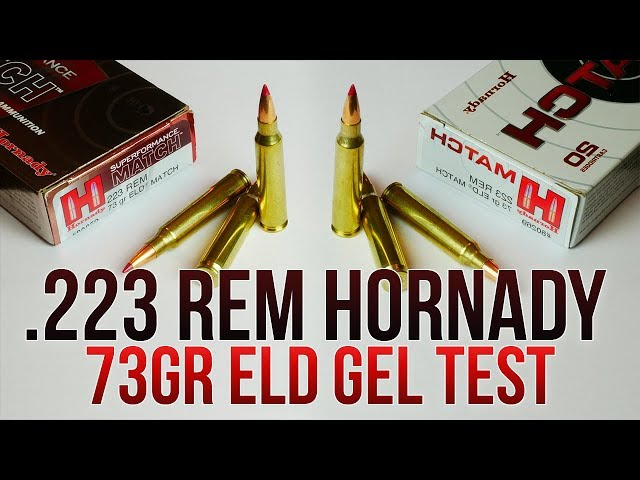 HD Carbine Gel Test: .223 Rem Hornady 73gr ELD