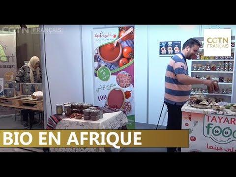 Tunisie : pour être le premier exportateur d'alimentation biologique d'Afrique