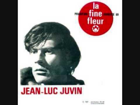 Jean Luc Juvin   Le poisson et l'abeille