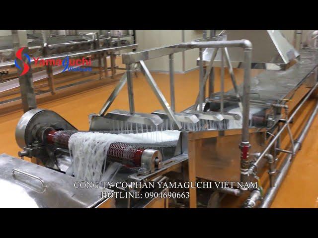 Dây chuyền sản xuất bún tươi tự động khép kín