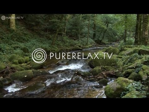 Nature Videos - Relaxing, Power, Energy, Regeneration & Nature Sounds