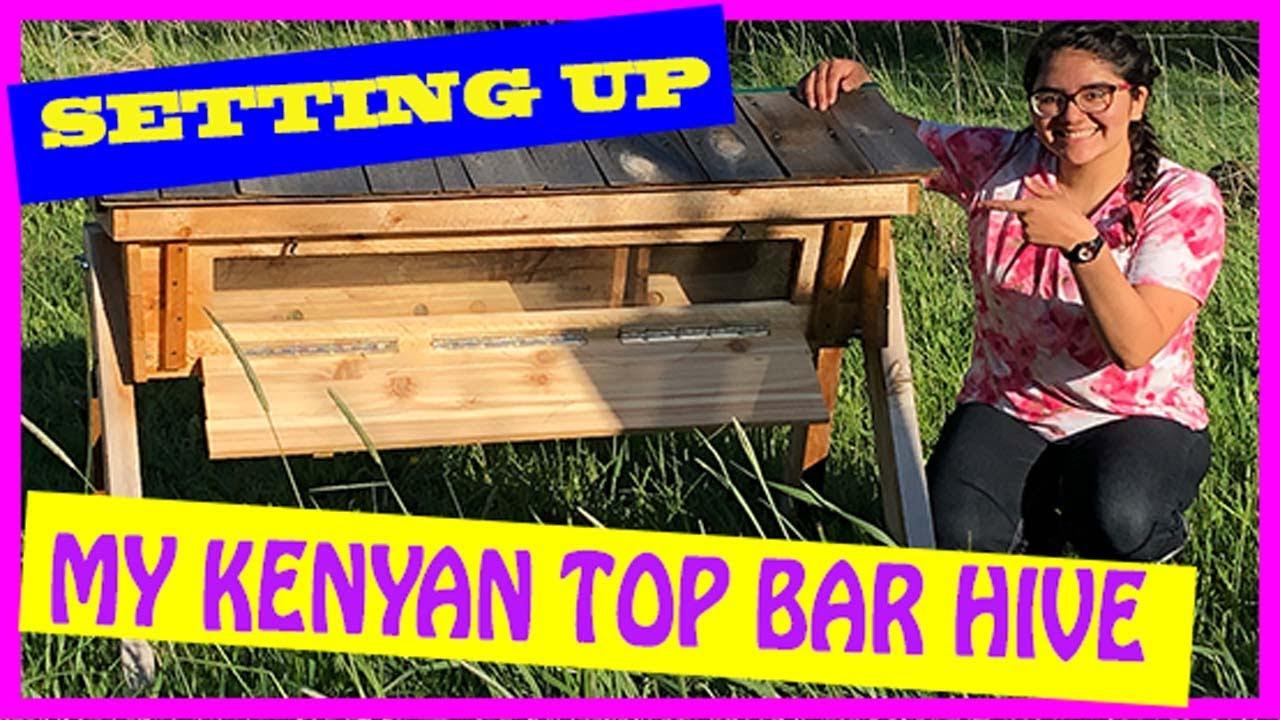 I GOT A NEW KENYAN TOP BAR HIVE! - YouTube