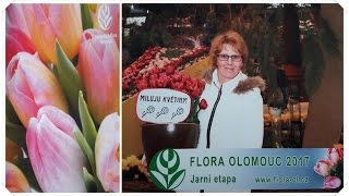 Flora Olomouc 2017 - Jarní etapa