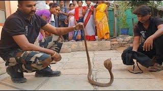देखिये कहा छुपा था ये कोबरा साप | Rescue cobra snake from Ahmednagar, maharashtra