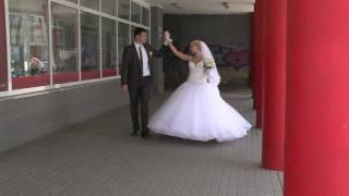 Житомир весёлая свадьба