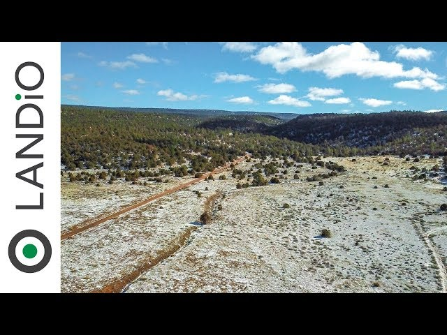 SOLD by LANDiO • Land in NEW MEXICO •20 Acres with Electricity & Road Frontage