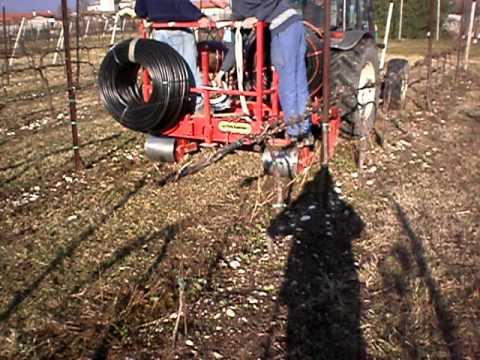 Irrigazione vigneto ha 5 estate 2010 doovi for Irrigazione vigneto