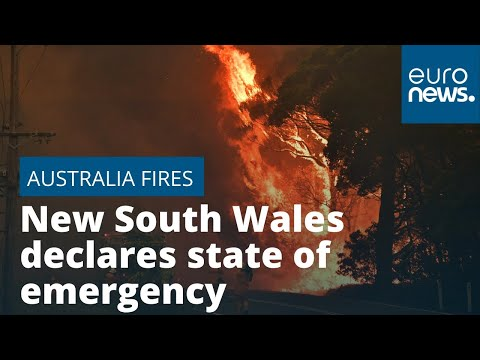 Australia Wildfires: New South Wales Declares State Of Emergency As Blaze Ravages Region
