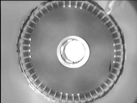 The OptoSwim Principle - optomotor response in salmon using lights