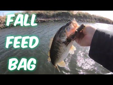 Ca Delta Bass Fishing.(FALL FEED BAG)