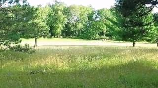 Homes for Sale - Lot 15 Hanscom Lake Trail - Danbury, WI 54830 - Thomas Peterson