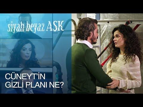 Siyah Beyaz Aşk 4. Bölüm - Cüneyt'in Gizli Planı Ne?