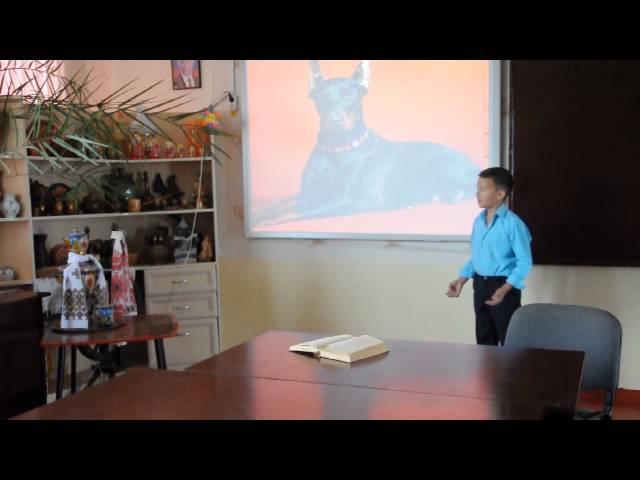 Изображение предпросмотра прочтения – КемалКуртеминов читает произведение «Собаке Качалова» С.А.Есенина