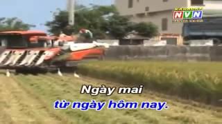 HAT VE CAY LUA HOM NAY Karaoke Nhạc Sóng HD