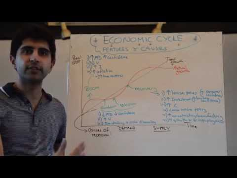 Economic Cycle Features and Causes