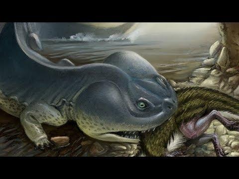 Koolasuchus - The Antarctic Amphibian That Ate Dinosaurs