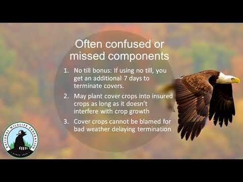 Soil Health Policy Issues - Ryan Stockwell