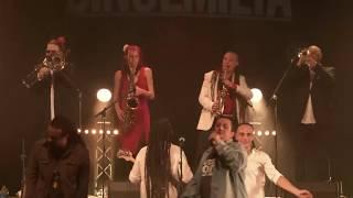 "SINSEMILIA : ""REGGAE ADDICT'S CONNECTION"" (Feat. Balik, Naâman, Bouchkour, Komlan)"