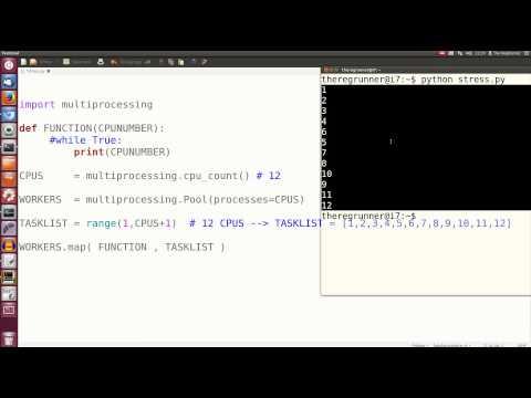 Python : Alle CPU