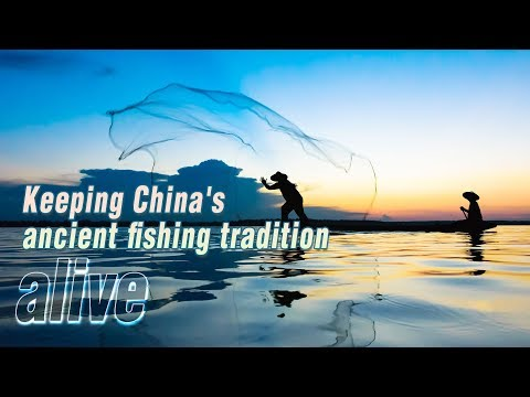 Live: Keeping China's ancient fishing tradition alive渔模,滩涂上的新职业