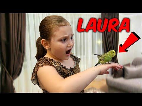 Laura S-A TRANSFORMAT