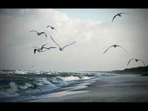 Friends are quiet angels - Gloria Sklerov & Barbara Rothstein