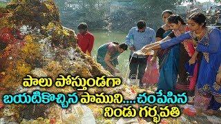 చవితినాడు నిండు గర్భవతి చేసిన పాపం..పాలు పోస్తు పాముని |Nagadevata Exclusive Story in Village