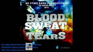 New Nu Vybes Band International  FLIP MOTION 2011 - 2010 St. Kitts Nevis Carnival