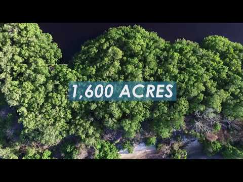 Restoring Our Bays: Preparing Sarasota Bay for Sea Level Rise